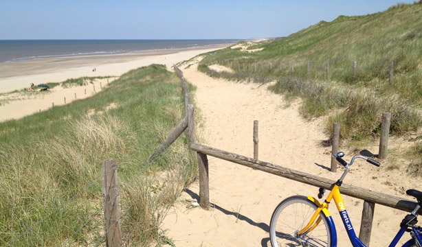 North Sea Beach Netherlands