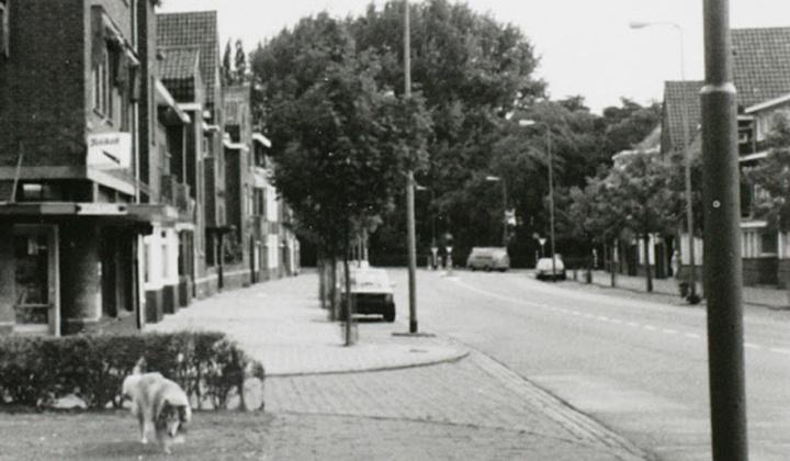 janschofferlaan1980s