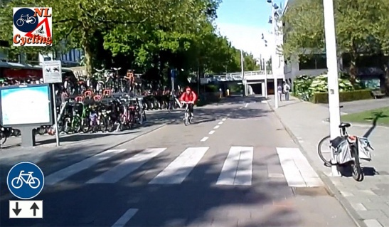 This may seem like a normal street to some but is is a cycleway. We do sometimes have zebra crossings on cycleways.