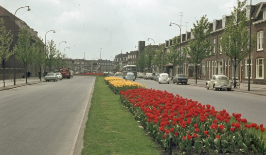 Vondellaan in 1965. Motor traffic had increased, cycling had decreased. That made protected cycleways safer. In my opinion cycling would have declined much more without these cycleways.