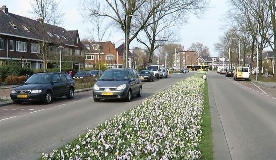 J.M. de Muinck Keizerlaan in 2016. Only one travel lane in each direction.