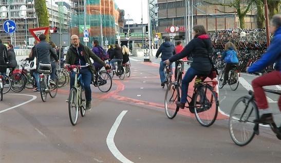 Temporarty cycling infrastructure on Smakkelaarsveld.