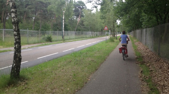 Waterleidingstraat before. A 60km/h rural road with one-directional cycleways on either side.