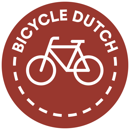 Bicycle Dutch 2 groot